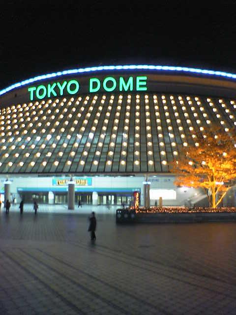夜景のドーム
